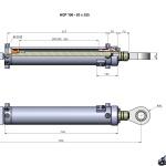 HCP 100 - 63 x 535